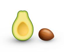Realistic Avocado For Healthy ...