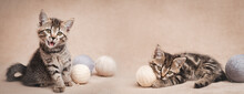 Tabby Kittens With Balls Of Woolen Yarn. Web Banner
