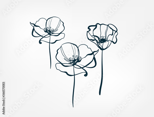 flower line one art isolated vector illustration