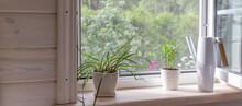 White Window With Mosquito Net...