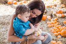 Pumkin Patch October Halloween