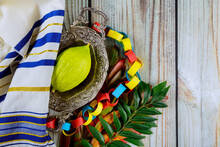 Traditional Fair Of Ritual Plants On The Eve Of Sukkot. Religious Jews Choose Etrog Fruit
