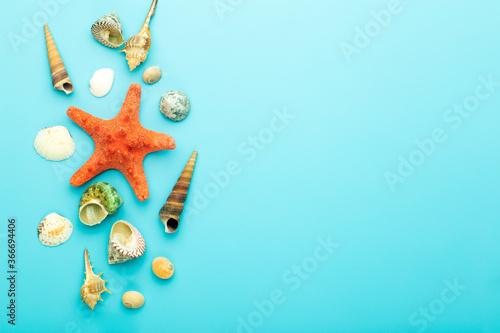 Fototapeta Sea (ocean) background. Seashells on a blue background. Rest, relaxation, sea, ocean, summer concept. obraz