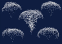 Set Of Computer Generated Irregular White Fractal Trees On Dark Blue Background Illustrating Big Data Flow