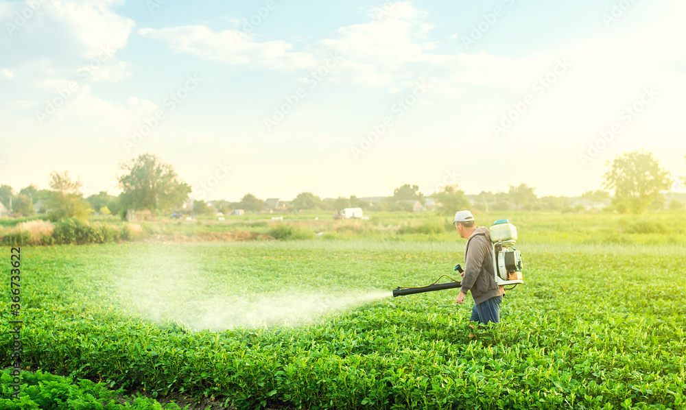 Fototapeta A farmer with a mist blower sprayer walks through the potato plantation. Use chemicals in agriculture. Agriculture and agribusiness. Treatment of the farm field against insect pests, fungal infections