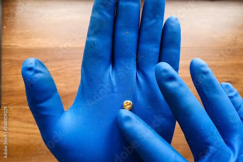 Photo small piece of gold in his hand with a glove. Mini nugget of gol