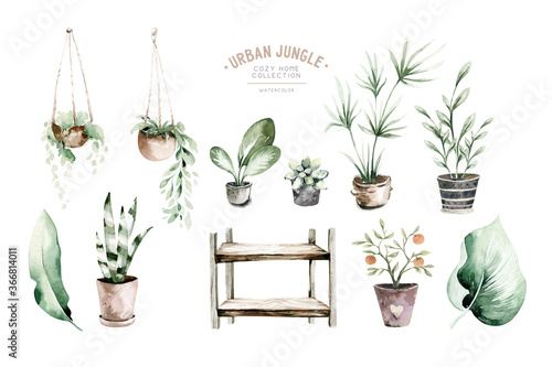 Watercolor hand painted house potted houseplant Fototapeta