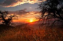 Hillside Sunset Thru Barb Wire