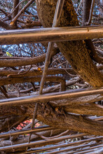 Branches On Top Of Metal Frame
