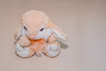 Stuffed Pink And White Rabbit