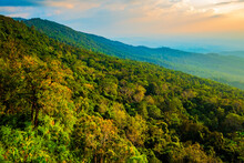 Mountain View And Forest Canopy Before Sunset At The Famous View Point Named Lan Hin Poom, Tourism Attraction In Phu Hin Rong Kla National Park, Thailand