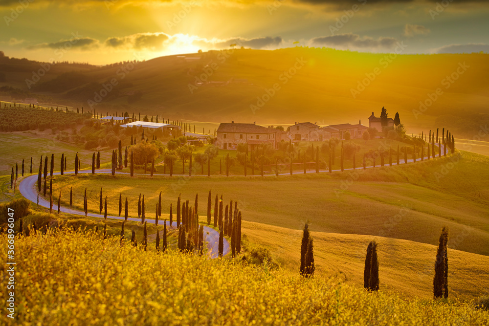 Fototapeta Well known Tuscany landscape with grain fields, cypress trees and houses on the hills at sunset. Summer rural landscape with curved road in Tuscany, Italy, Europe