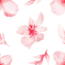 Pink Watercolor Flower Isolate...