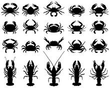 Black Silhouettes Of Crawfish ...