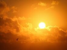 Nature Soleil