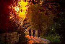 Amish Boys At Sunrise On Bicyc...