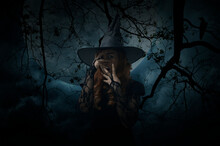 Scary Halloween Witch Standing Over Dead Tree, Crow, Birds, Full Moon And Spooky Cloudy Sky, Halloween Mystery Concept