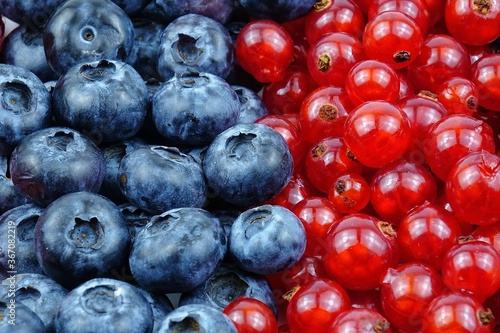 Photo Fresh summer healthy berries