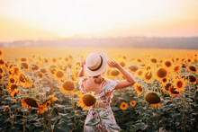 Beautiful Summer Nature Amazin...