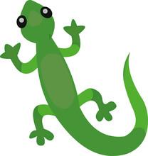Vector Illustration Of A Lizard