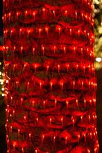 Beautiful Lighting And Decorat...