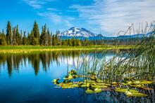 Hosmer Lake In Central Oregon,...