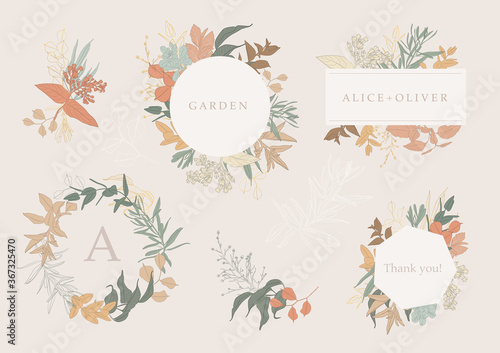 Botanical garden. Vector collection of hand drawn plant elements Canvas