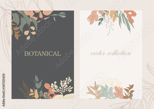 Botanical garden. Vector collection of hand drawn plant elements Fototapete