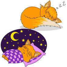 Sleeping Chanterelle Sticker