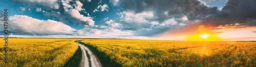 Photo Elevated View Of Sunshine During Sunset Above Rural Landscape With Blooming Canola Colza Flowers
