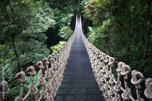 Canvastavla Wooden suspension bridge in the forest