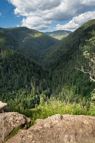 Fototapeta Ravine and forest of Slovak Paradise seen from Tomasovsky vyhlad (Tomasovsky view). Beautiful summer day. Clean nature and tranquil scene obraz