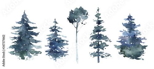 Fotografía Watercolor winter forest