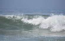 Ocean Barrel Wave Forming As It Breaks And Rolls Towards Shore.