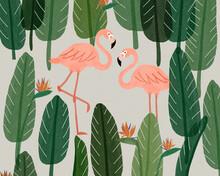 Couple Of Flamingo With Bird Of Paradise Background