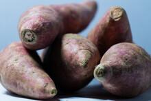 Raw Fresh Skin Of Potato Under The Light.