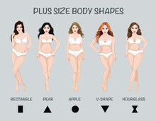 Plus Size Body Shapes, Isolate...