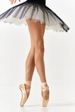 Ballerina in tutu and pointe shoes cropped view