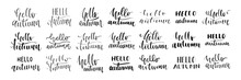 Vector Set Of Isolated Handwri...