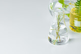 Fototapeta Kawa jest smaczna - Plants in laboratory glassware. Skincare products and drugs chemical researches concept