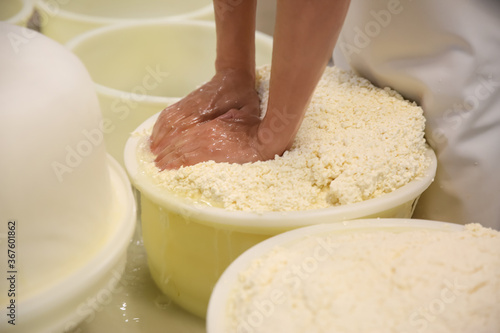 Obraz Worker pressing curd into mould at cheese factory, closeup - fototapety do salonu