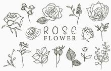 Black Rose Logo Collection Wit...