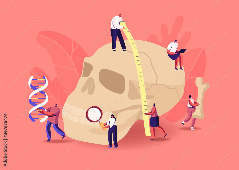 Fototapeta Anthropology Studying. Tiny Characters Measuring Huge Human Skull, Carry Bones and Dna Spiral. Paleolithic Research