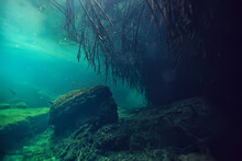Underwater Cave Stalactites Landscape, Cave Diving, Yucatan Mexico, View In Cenote Under Water
