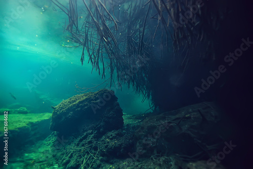 Obraz underwater cave stalactites landscape, cave diving, yucatan mexico, view in cenote under water - fototapety do salonu
