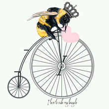 Fashion Apparel Print Bumble Bee On Bicycle With Crown