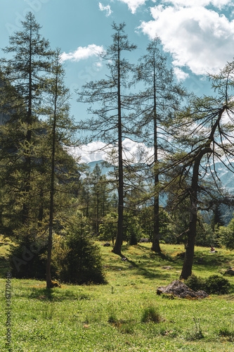 Mountain landscape in north Italy, Val di Mello Wallpaper Mural