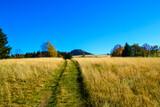 Fototapeta Sawanna - Droga w górach