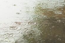 Kropli Deszczu Na Kałuże