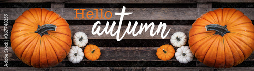 Fototapeta Hello / happy autumn background banner panorama - Top view from different autumnal orange and white colorful pumpkins on old rustic wooden pallet and hand drawing lettering obraz
